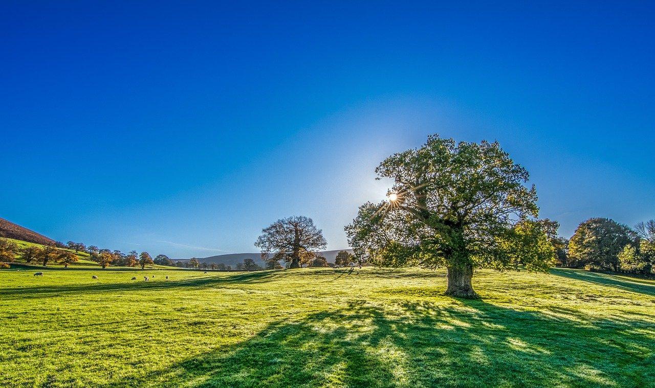 Prvi Međunarodni dan čistog vazduha za plavo nebo