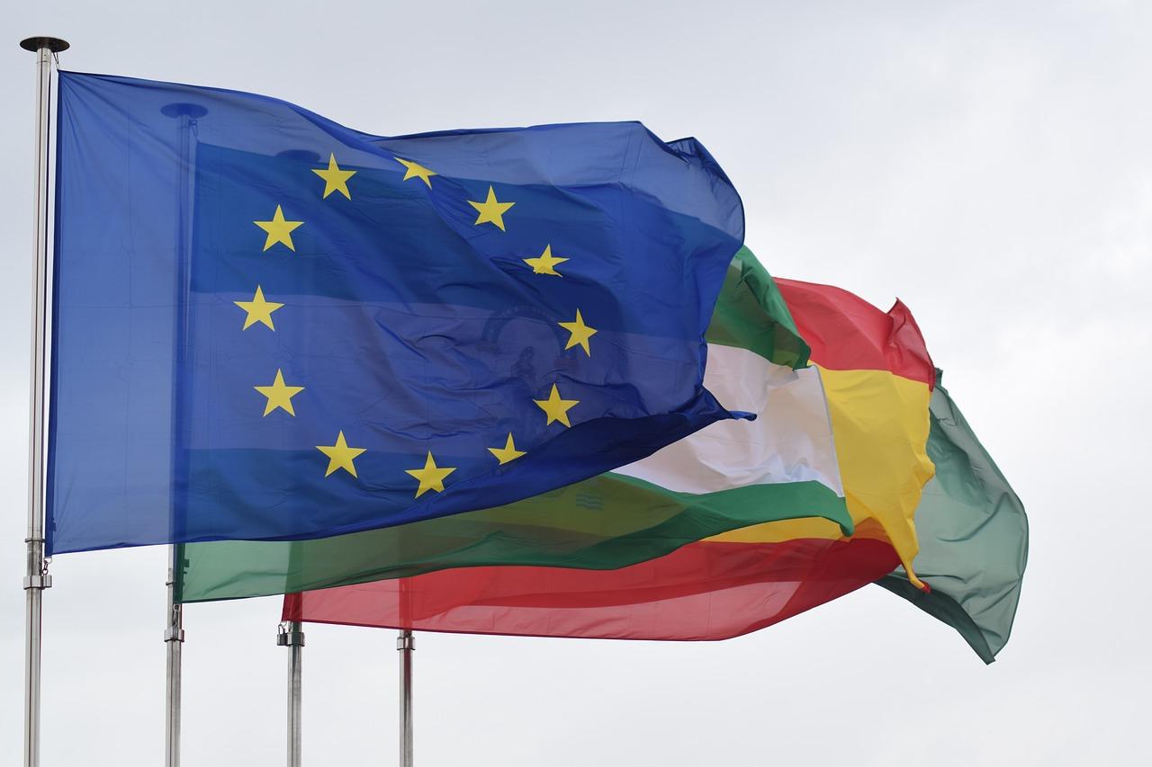 Komšijske blokade: Članstvo u EU kao instrument ucene