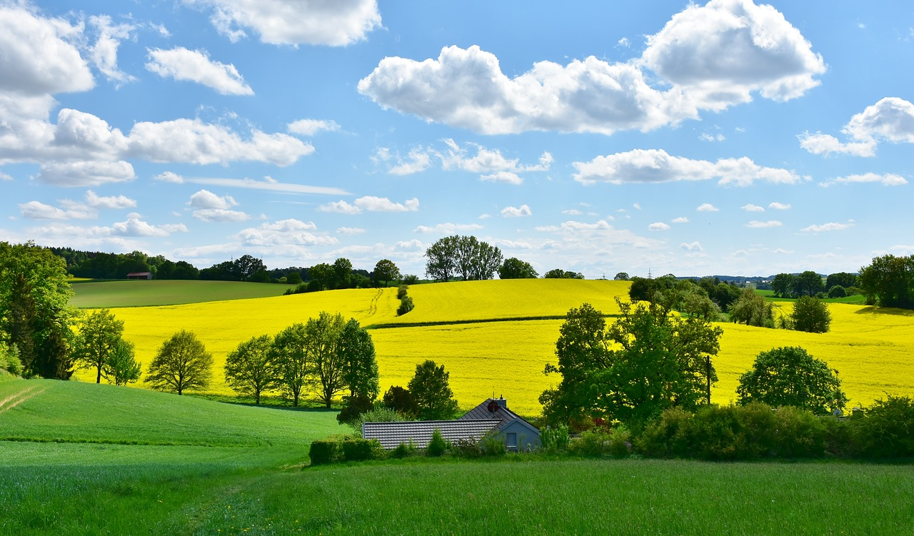 Koalicija 27 zahteva ponovno pokretanje izrade Zakona o zaštiti prirode
