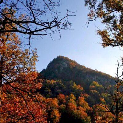 Bajkoviti prizori karpatskih vrhova, vodopada Beli Izvorac i mit o vilama Vlve